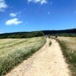 Pilegrim – refleksjoner på veien til Santiago de Compostela